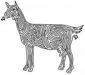 Goat Maze