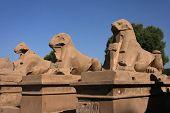 Allee der Sphinxe
