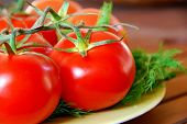 Perfecty Red Fresh Tomatoes