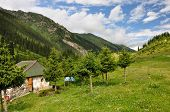 pic of swales  - Colorful mountain hut in Altyn - JPG