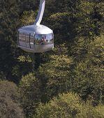 Aerial Tram In Trees