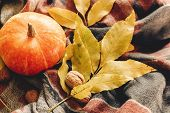 Autumn Pumpkin With Colorful Leaves  And Walnuts On Stylish Scarf Fabric, Space For Text. Happy Hall poster
