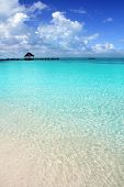 Постер, плакат: Карибский тропический пляж кабина Пирс Contoy остров Мексика