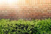 Wall Brick And Green Bush In The Park With The Sunlight. Wall Brick And Circle White Window Over Gre poster