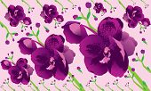 Background Orchid