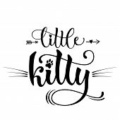 Little Kitty Quote. Baby Shower Hand Drawn Calligraphy Style Lettering Phrase. poster