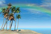Tropical Beach And Rainbow