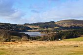 Burrator Reservoir dartmoor devon