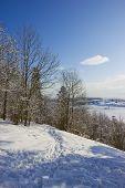 Winter At Dudergofsky Heights, The Orehovaja Mountain.