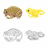 Isolated Object Of Wildlife And Bog Sign. Set Of Wildlife And Reptile Stock Symbol For Web. poster