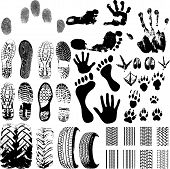 A Collection Of Vector Fingerprints, Footprints And More