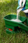 stock photo of fertilizer  - Preparing to fertilize lawn in back yard in spring time - JPG