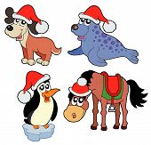 Christmas Animals Collection poster