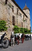 Horse drawn carriages, Cordoba, Andalusia, Spain.