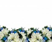 Christmas Border Blue White Poinsettias