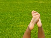 Soles on Grass Background