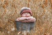 Newborn In The Fall