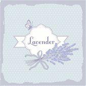 Lavender, herb, flower, floral vintage background