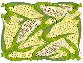 A Pile of Yellow Fresh Corns Background