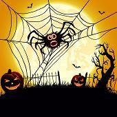 Big spider and pumpkins