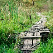 Dilapidated Wooden Footpath