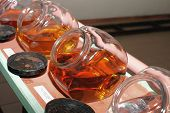 stock photo of assemblage  - row of glasses with samples of White and Brown rum - JPG