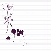 ink drawing  flower at lined paper