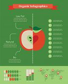 organic infographics with apple and charts