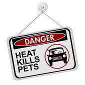 pic of kill  - Dangers of leaving a dog in parked cars A red and black danger sign with the words HEAT KILLS PETS isolated on a white background - JPG