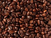 picture of brew  - Coffee beans background with roasted natural seeds for brewing espresso or cappuccino as a natural food concept with a java blend of different types of roasts from around the world - JPG