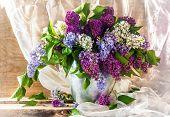 Still Life Sprigs Lilac Thriving