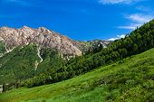 stock photo of snowbird  - Summertime in Little Cottenwood Canyon in the Wasatch Range of the Rocky Mountains Utah - JPG