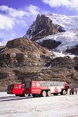 Ice buses