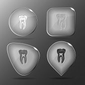 Tooth. Glass buttons. Vector illustration.