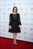 LOS ANGELES - AUG 23:  Sarah Paulson at the Television Academy's Perfomers Nominee Reception at Paci