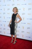 LOS ANGELES - AUG 23:  Julie Bowen at the Television Academy's Perfomers Nominee Reception at Pacifi