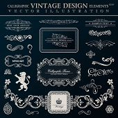 Calligraphic heraldic decor elements. Vector vintage frameworks black