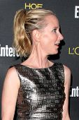 LOS ANGELES - AUG 23:  Anne Heche at the 2014 Entertainment Weekly Pre-Emmy Party at Fig & Olive on