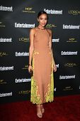 LOS ANGELES - AUG 23:  Ashley Madekwe at the 2014 Entertainment Weekly Pre-Emmy Party at Fig & Olive
