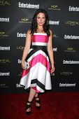LOS ANGELES - AUG 23:  Katie Lowes at the 2014 Entertainment Weekly Pre-Emmy Party at Fig & Olive on