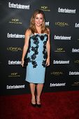 LOS ANGELES - AUG 23:  Sasha Alexander at the 2014 Entertainment Weekly Pre-Emmy Party at Fig & Oliv