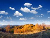 Mountain panorama on a sunny afternoon. Colorful autumn forest
