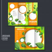 Ecology Concept Tri-fold Template Brochure With Leaf Element