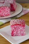 Pink Lamingtons - Selective Focus Vertical
