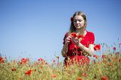 Woman At Red Dress Collect Poppy Blossoms
