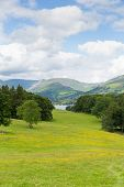 Country scene of Langdale Valley and Fairfield Horse mountains from Wray Castle Lake District uk