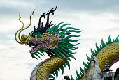 picture of dragon head  - THe head of a dragon with sky - JPG