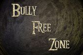 Bully Free Zone Concept