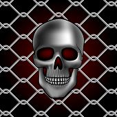 metal chain link fencewith skull