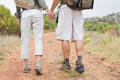 Rear view of hiking young couple walking on mountain terrain